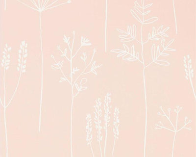 Scion Stipa Blush 112018 Wallpaper