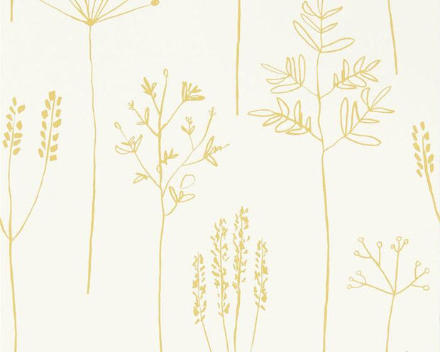 Scion Stipa Honey 112021 Wallpaper
