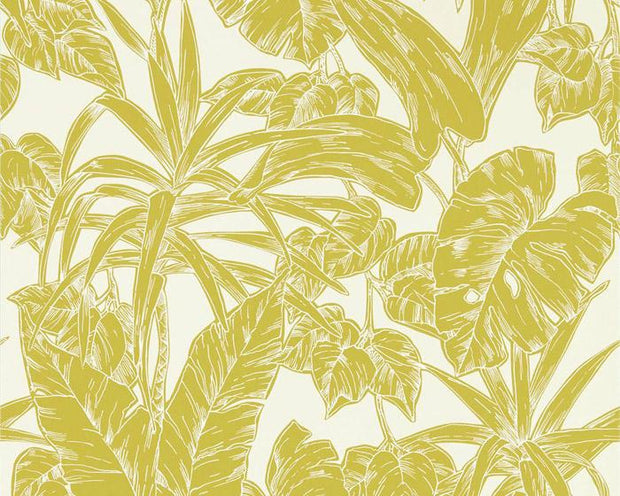 Scion Parlour Palm Citrus 112022 Wallpaper