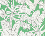 Scion Parlour Palm Gecko 112024 Wallpaper
