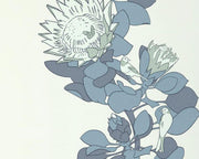 Paint & Paper Library Protea Trail Blue's Blue PPPTBB Wallpaper