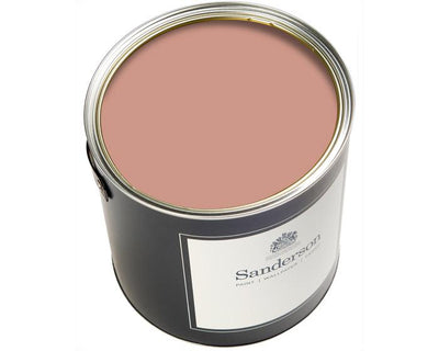 Sanderson Active Emulsion Inkwood Paint