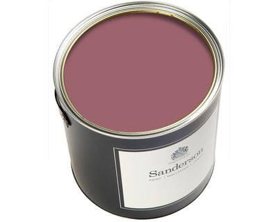Sanderson Active Emulsion Purple Lagoon Paint