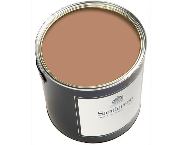Sanderson Active Emulsion Squirrel Paint