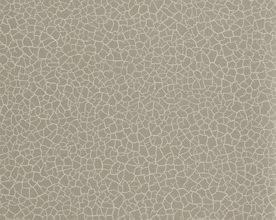 Zoffany Cracked Earth Stone 312528 Wallpaper