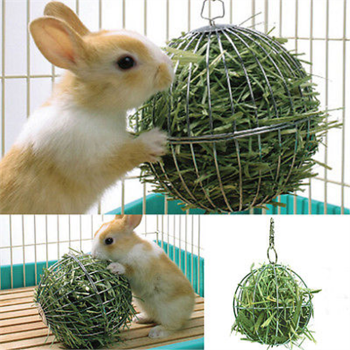 Stainless Steel Round Sphere Rabbit Pet Toy