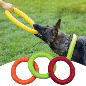 Puller dog training loop