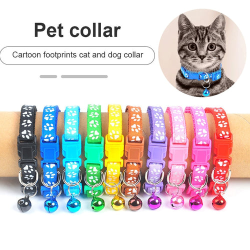 New cute pet collar