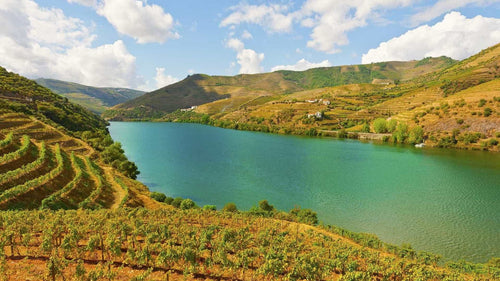 Beautiful view of the Douro