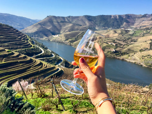 Douro view with wine