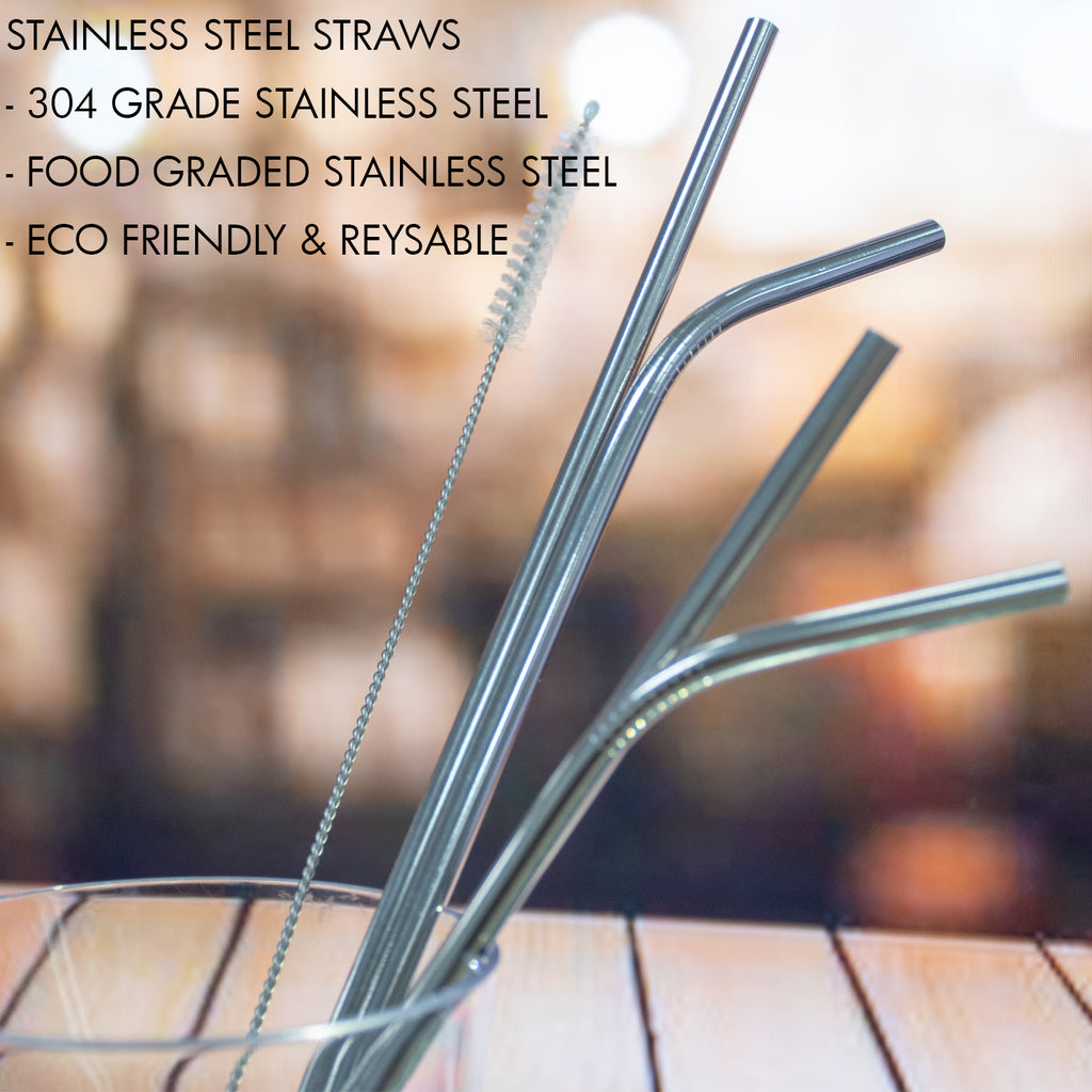 Stainless Steel Straw - Set of 4 (Steel)