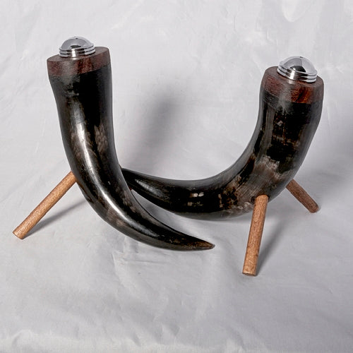 Salt and Pepper Shaker - Curly Black Cow Horn - Melanie - MH Studios