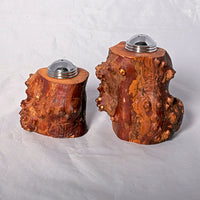 Salt and Pepper Shaker Set - Mountain Laurel Root #2 - Melanie - MH Studios
