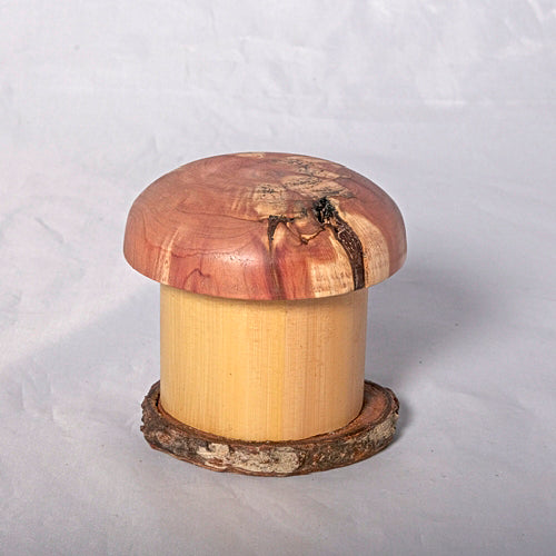 Small Organic Wooden Jewelry Box - Cedar, Pear and Bamboo- # 12 - Melanie - MH Studios