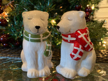 Load image into Gallery viewer, Polar Bears with Scarves Salt & Pepper
