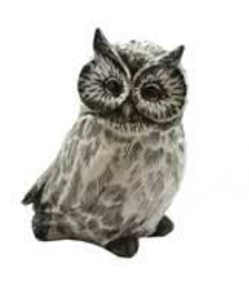 Grey Etched Owl