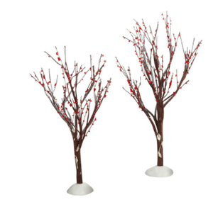 winter berry trees