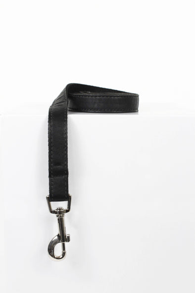 Accessories - Sparkling Nights Dog Leash - wynwoodtribe