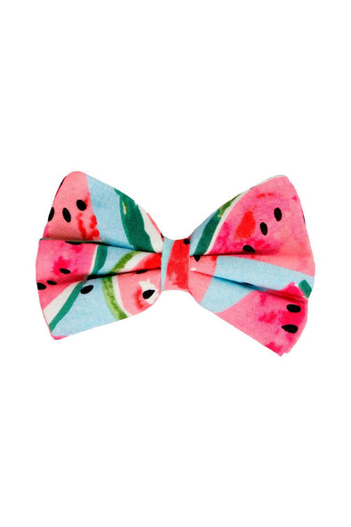 Accessories - Watermelon Love Dog Bow Tie - wynwoodtribe