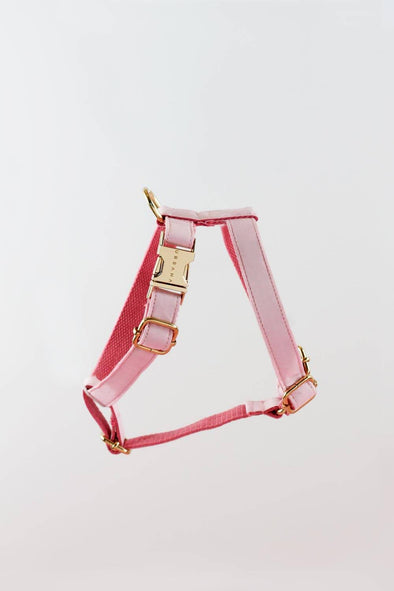 Accessories - Pink Lemonade Dog Harness - wynwoodtribe