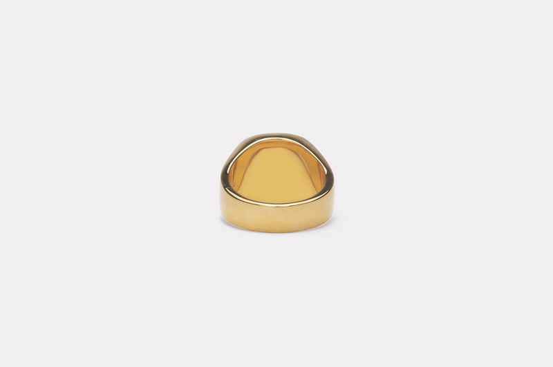 IX Cushion Signet Ring Hawks Eye
