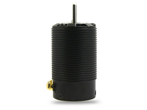 ZTW 1:8 Scale 4 Pole Sensored Brushless 1950kv BP4269-2D