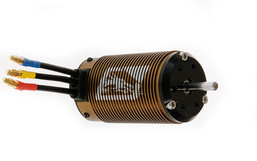 Dragon-RC Motor brushless BL 8 1650kv 211005