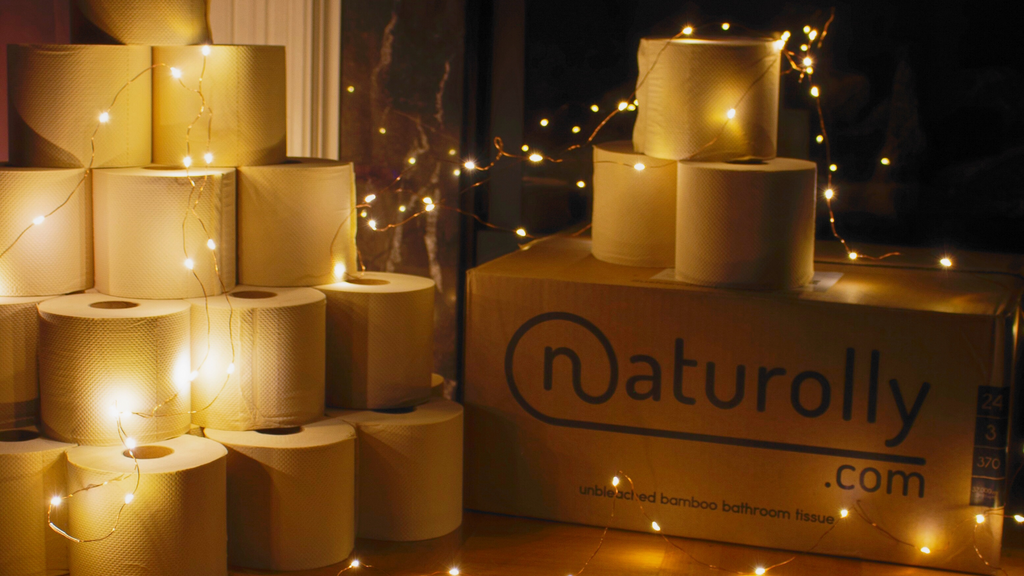 Naturolly First Paper Anniversary Banner gold yellow fairy lights aesthetic