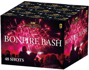 Hallmark Bonfire Bash-308