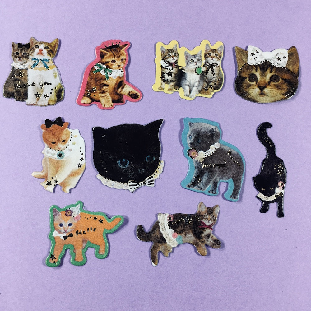 Stickers Gatos Set