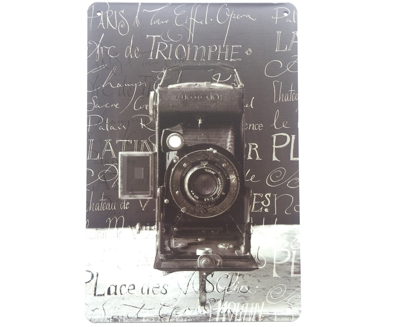 Vintage Camera Photography Metal Poster