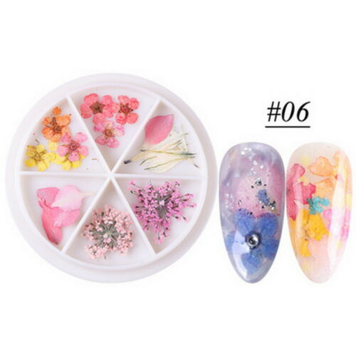 Real Nail Dried Flowers DIY Tips Manicure 24 PCS
