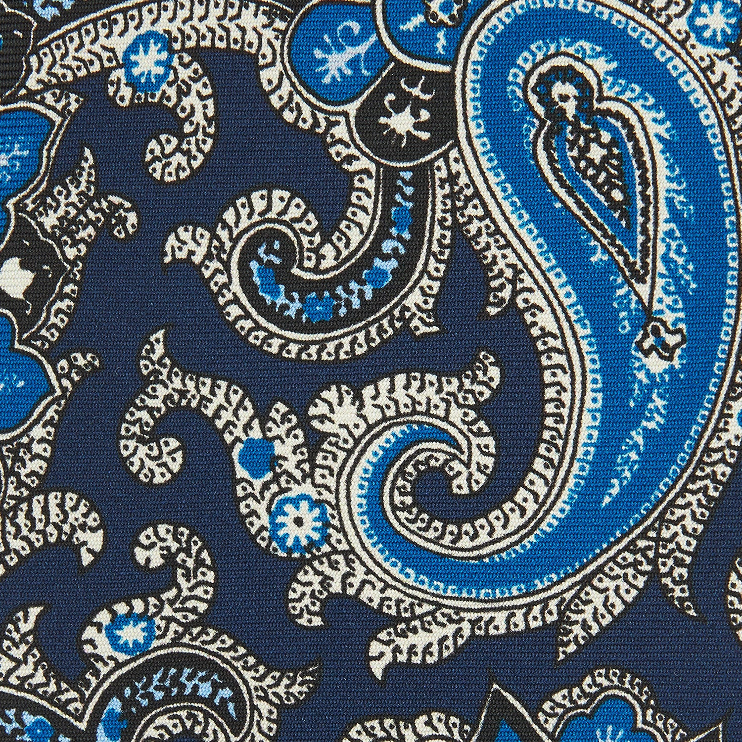 Blue and Navy Twisted Paisley Silk Tie