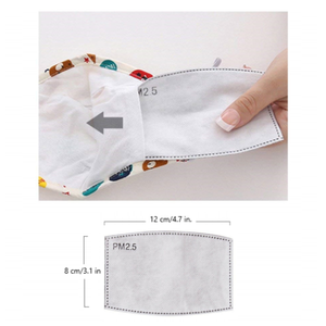 PM2.5 Mask Replacement Filters for Reusable Cloth Masks