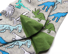 Load image into Gallery viewer, Fun Variation Sox - Dinosaurs