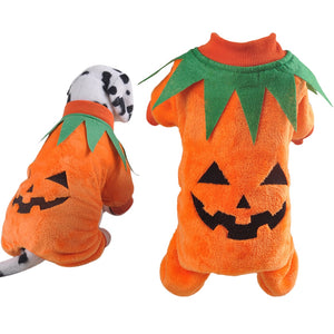 Funny Pet Costumes Cat Dog N.4 (Halloween)