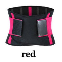 Back Belt CT100