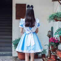 Alice In Wonderland Party Cosplay Costume CC2970
