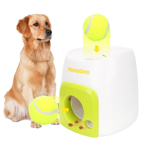 Automatic Throwing Machine (Dogs)