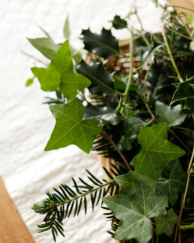 Garden greenery to decorate table