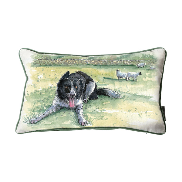 WATERCOLOUR BORDER COLLIE CUSHION