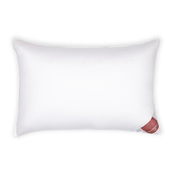 Brinkhaus Luxury Twin Pillows