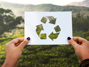 Top 5 Environmentally Friendly Printing Methods