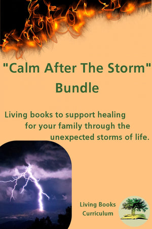 Calm After The Storm Bundle