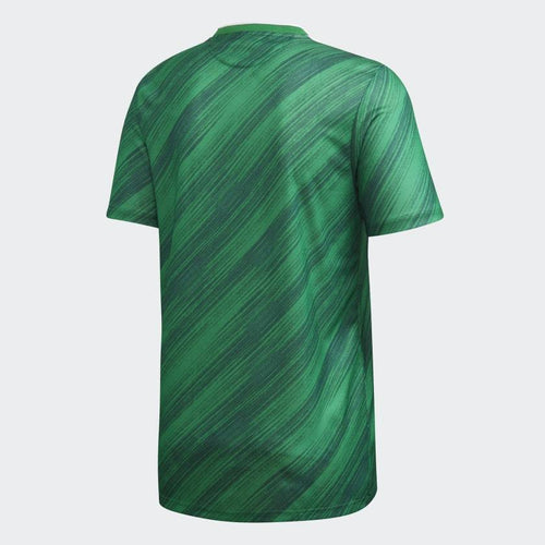 Adidas Northern Ireland Euro 2020 Home Soccer Jersey, Back