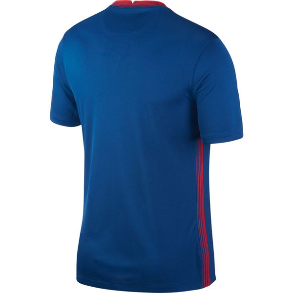 Atletico Madrid Away Soccer Jersey 20/21, Adult, Back View