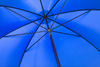 Royal Blue Umbrella