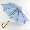 Pale Blue Umbrella