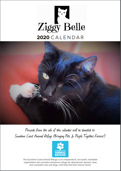 Ziggy Belle to Support Sunshine Coast Animal Refuge!!