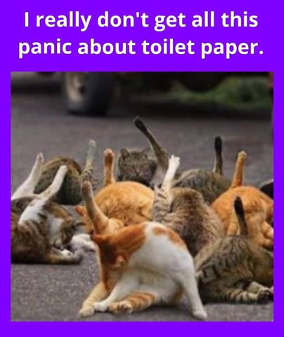 Whats All The Fuss About Toilet Paper?
